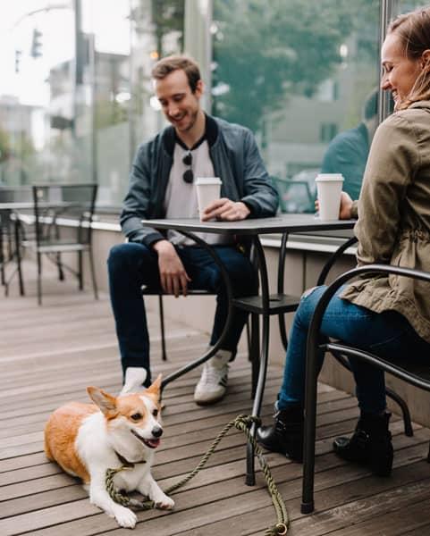 Tag din hund med på date